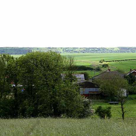 View across Mattingley Farm to Afton Down